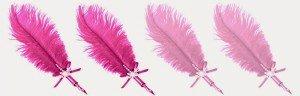 plumes 2vrai