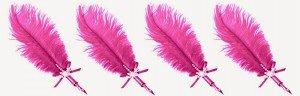 plumes 4vrai